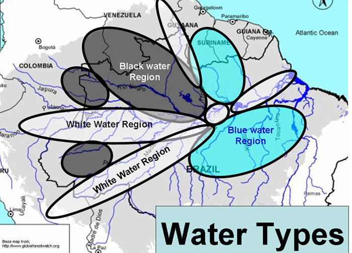 Amazon river types