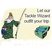 peacock bass tackle wizard