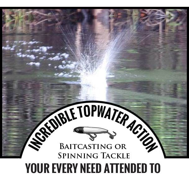 INCREDIBLE TOPWATER ACTION - Baitcasting or Spinning Tackle - Your Every Need Attended To
